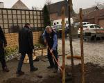 Bepflanzung_Lindenplaetzchen_Lembeck_10.04.2021_009