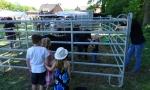 Tiermarkt_Lembeck_2018.05.06_Foto_Lembecker.de_Frank_Langenhorst_055