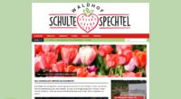 Screenshot_2020-05-06 Waldhof Schulte Spechtel in Dorsten-Wulfen - Frischer Spargel.png