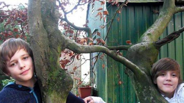 Der »Wunderbaum von Lembeck« als Symbol: Ole Taube (links), der das Phänomen entdeckt hat, und Nicolai Million sind Freunde, Nachbarn, Schüler am St. Ursula-Gymnasium. (Foto: privat)