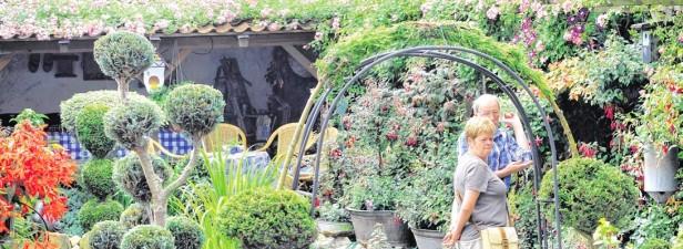 Am Lembecker Bonhoefferring präsentierten Marita und Gerd Hortmann ihre private Gartenpracht der Öffentlichkeit.Foto: André Elschenbroich