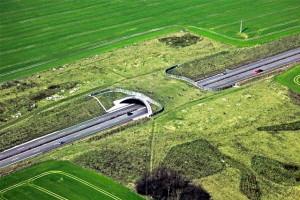 So könnte die geplante Grünbrücke aussehen. (Foto: privat)