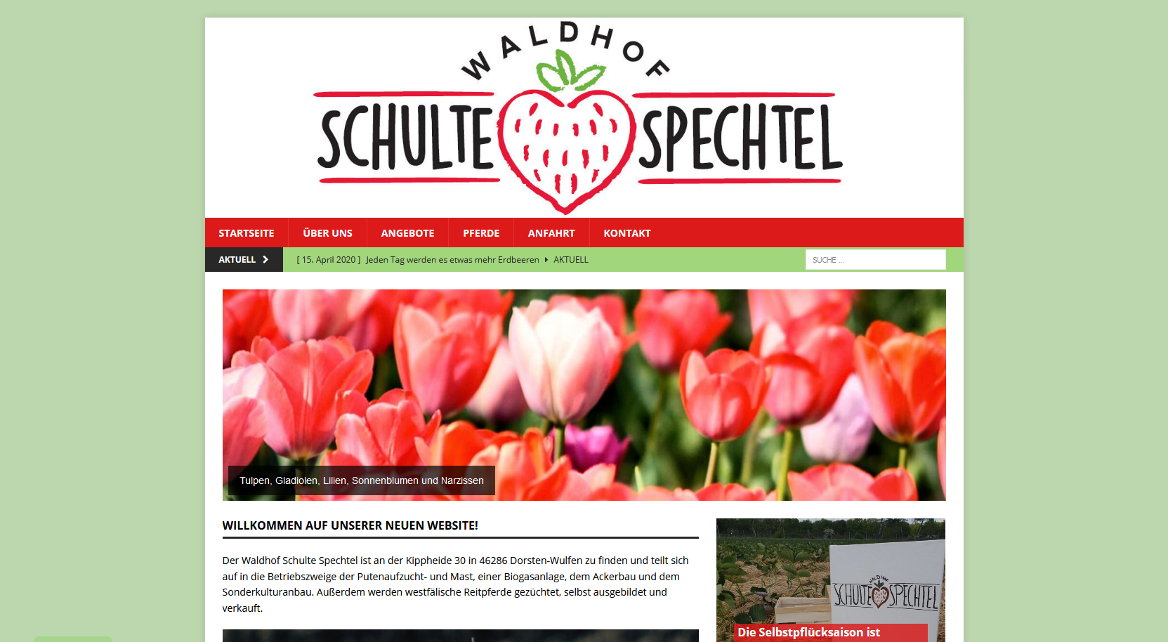 Waldhof, Schulte Spechtel, Spargel, Erdbeeren, Frisch